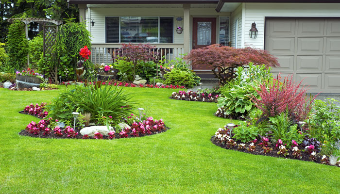 What are the things you should check out before hiring a landscaper in Sydney?